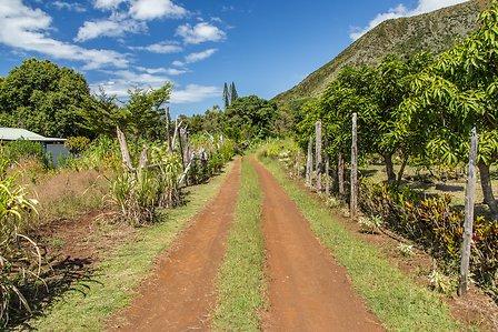 Voyage en Nouvelle Calédonie terre rouge île de Grande Terre un circuit routedelacaledonie.com
