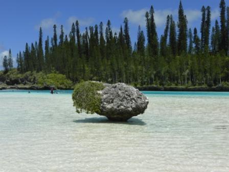 voyage-vacances-sejour caledonie piscine naturelle ile des pins